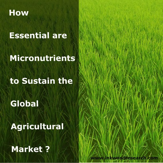 How-Essential-are-Micronutrients-to-Sustain-Global-Agricultural